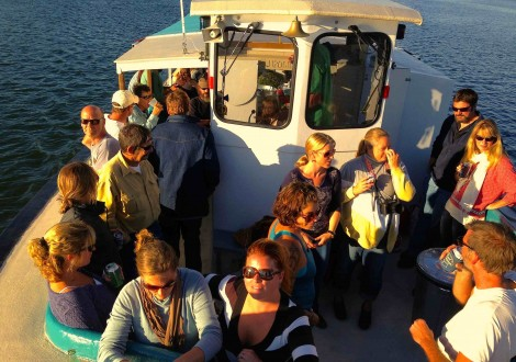Happy Hour Sunset Cruise Damariscotta River Cruises Maine. Oysters, drink specials, snacks, expertly selected beer and wine are served at Olga's Boat Bar.