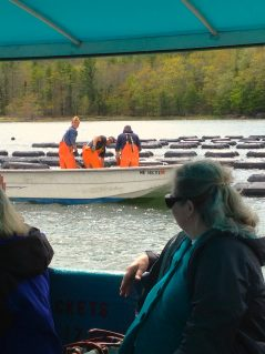 Oyster Farms & Seal Watching Tour, Damariscotta River Cruises Maine